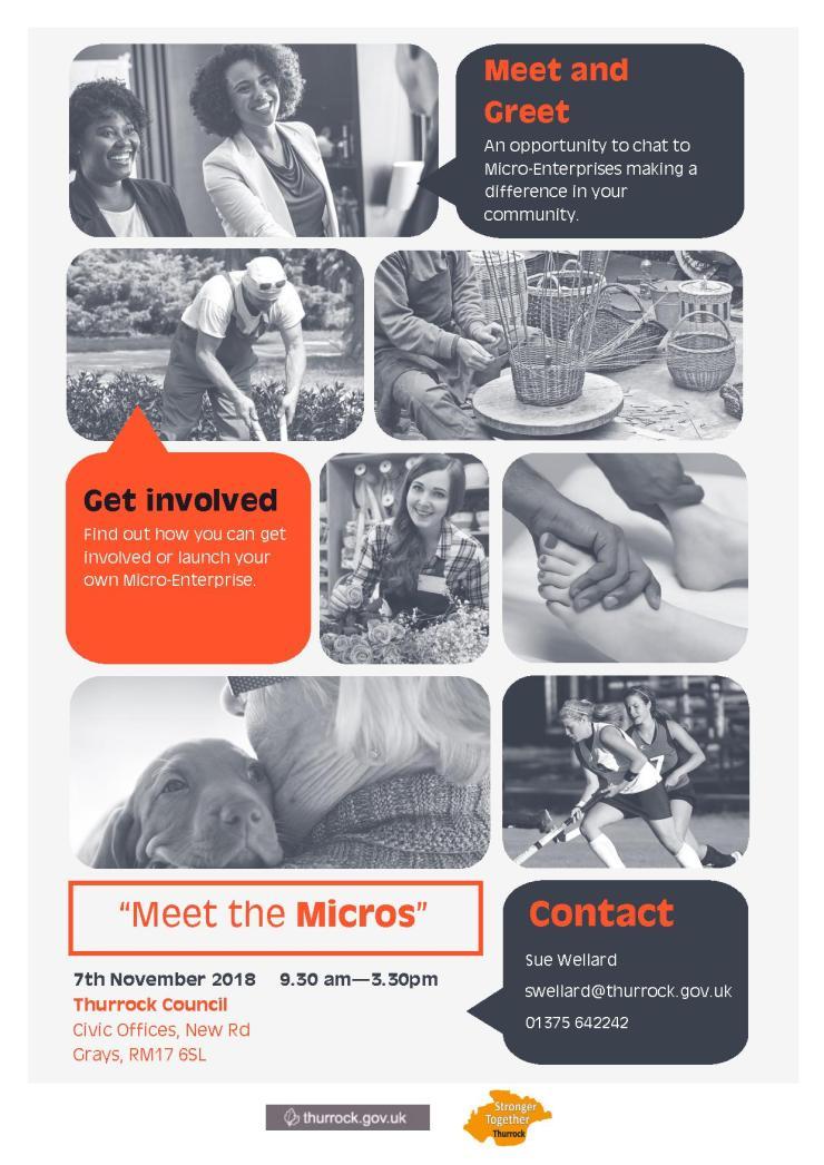 18.11.07 meet the micros flyer